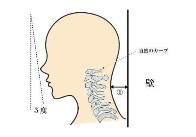 首の自然な角度